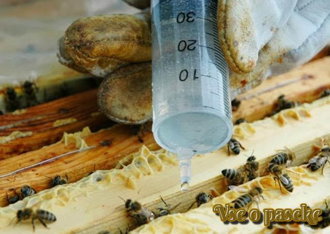 Купить лекарства и препараты для пчел