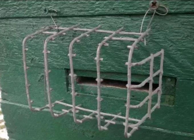 металлическая сетка на летке