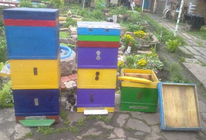 цветовая гамма домиков