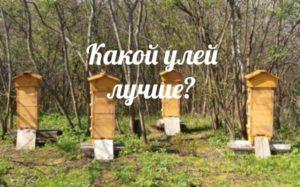 Улей кассетный для павильонного содержания пчел