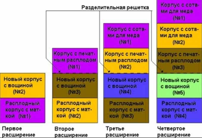 схема расширения