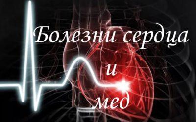 Лечение сердца и сосудов с помощью меда