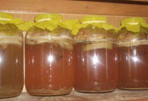 Как лечатся лепешкой из ржаной муки с медом