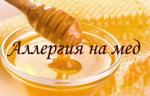 Как правильно применять мед с желчью