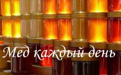 О ежедневном употреблении меда и его количестве