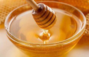 Применение трепанга на меду у взрослых и детей