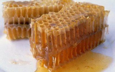 Можно ли есть воск вместе с медом в сотах