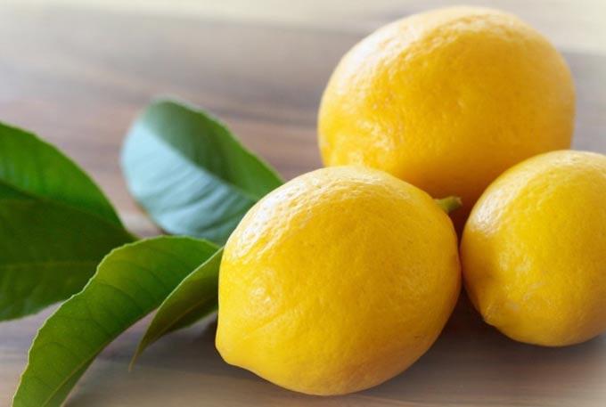 Мед и лимон – средство от многих болезней