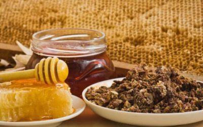 Что такое прополисный мед и как его применять