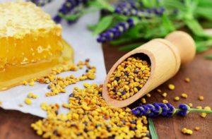 Отбор  у пчел пыльцевой обножки